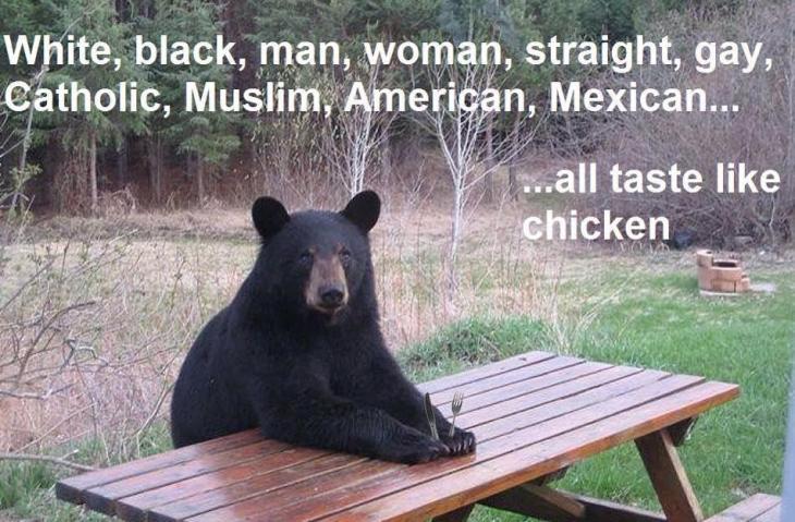 Bear Meme
