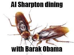 Al Sharpton dining with Barak Obama