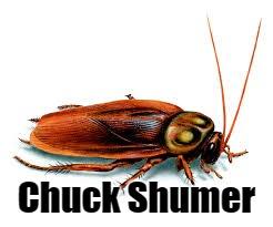 Chuck Shumer